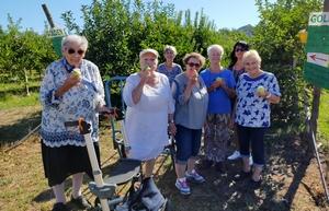 Nos aînées ramassent les pommes
